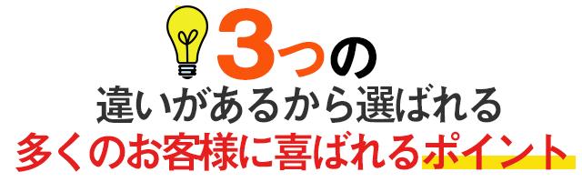 大阪椎間板ヘルニア専門整体院昭和町カイロの3つの違い画像